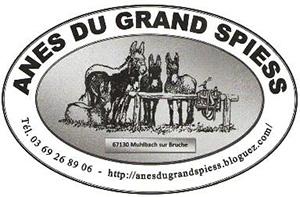 Logo Anes Du Grand Spiess